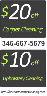 Professional Carpet Cleaning Steam Cleaner Services
